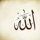 99 Names of Allah + Audio APK