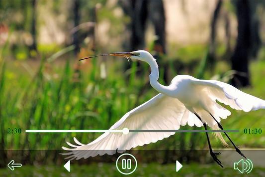 All Video PlayerPro apk screenshot