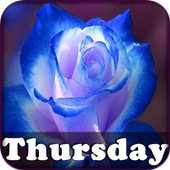 Thursday's Messages icon