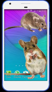 Mouse run in phone Prank poster