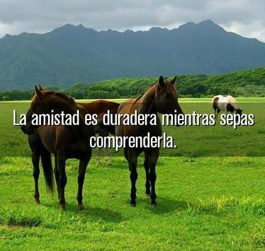 Imagenes Bonitas de Amistad screenshot 2