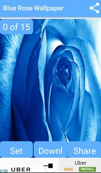 Blue Rose Wallpaper for Android - APK Download