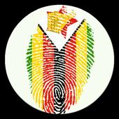 All Newspapers Zimbabwe icon