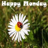 Happy Monday icon