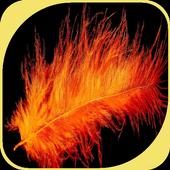 Orange Feather icon