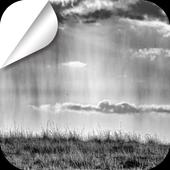 A Desolate Meadow icon