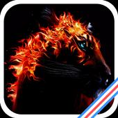 Burning Tiger icon
