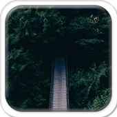 Bridge Outside the Woods icon
