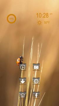 Cute Beetle apk screenshot