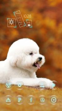 Cute White Puppy apk screenshot