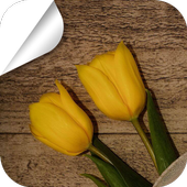 Flowers on the Table icon