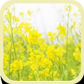 Golden Flower icon