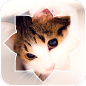 Lovely Cat icon