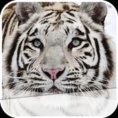 The White Tiger icon