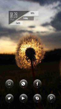 The Beautiful Dandelion poster