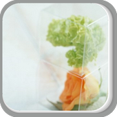 Transparent Box of Flowers icon
