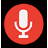 Voice Fake icon