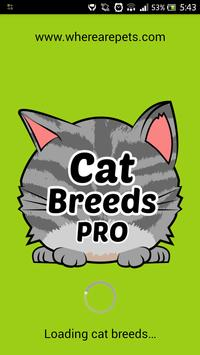 Cat Breeds PRO poster
