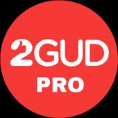 2Gud Pro icon