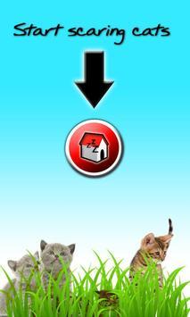 Barking Dog poster