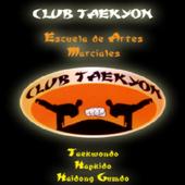 Club Taekyon icon