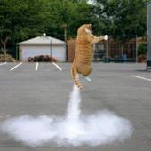 Cat Fart Soundboard icon