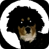 The Dog Trainer 1000 Free icon