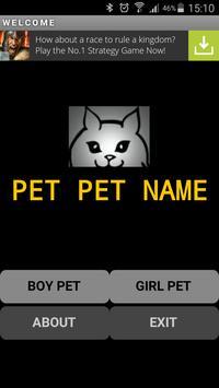 """""""PET PET NAME"""" poster"""