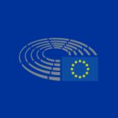 EU Parliament icon
