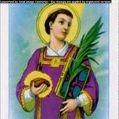 Parrocchia S. Stefano icon