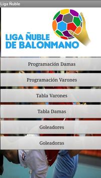 liga Balonmano Ñuble poster