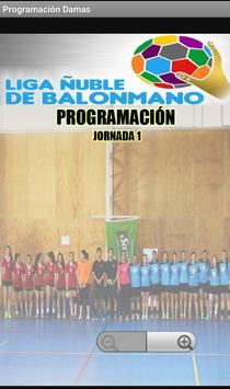 liga Balonmano Ñuble screenshot 1