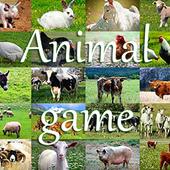 Animal Game IT Free icon