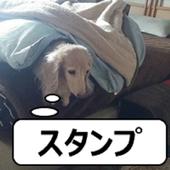 動物スタンプvol.3 icon