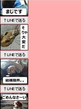 動物スタンプvol.3 apk screenshot