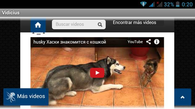 Videos online en Vidicius screenshot 1