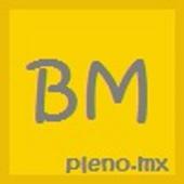 BannerMono icon