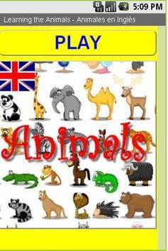 Animales en Ingles poster