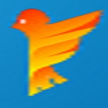FallingBird poster