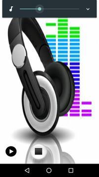 Rádio Sensação Mix poster