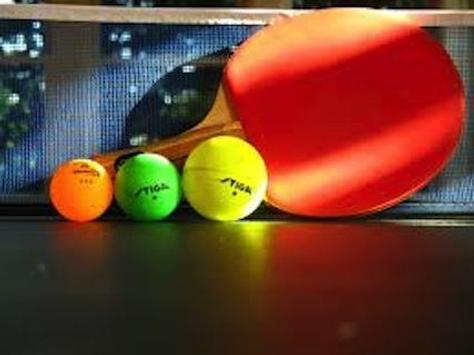 The Ultimate Ping Pong Game apk screenshot
