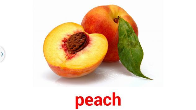 閃卡 flashcard fruits poster