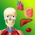 Puzzle Anatomy (learning game)