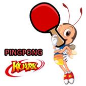 Pingpong Kuark icon