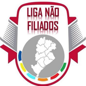 LIGA NÃO FILIADOS screenshot 1