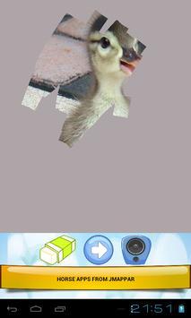 CUTE ANIMALS screenshot 19