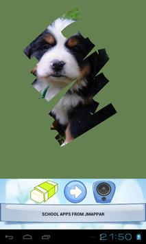 CUTE ANIMALS screenshot 4