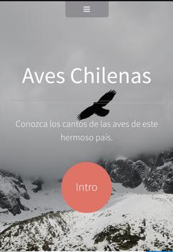 AVES CHILENAS poster