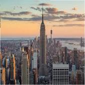 New York Struggles icon