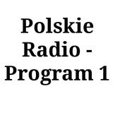 PolskieRadio1 icon